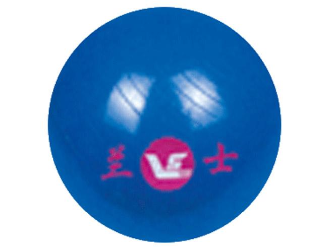 1210健身球